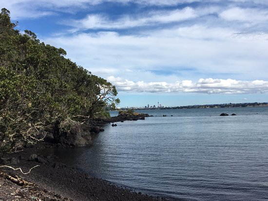 Rangitoto Island: Mackenzie bay looking back to Auckland