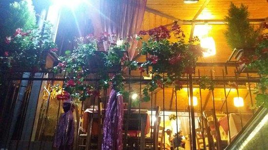 Terrazza esterna bellissima..fiori e luci.. - Picture of Pizzeria ...