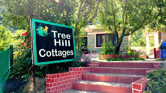 Tree Hill Cottages and Kanyal Villas