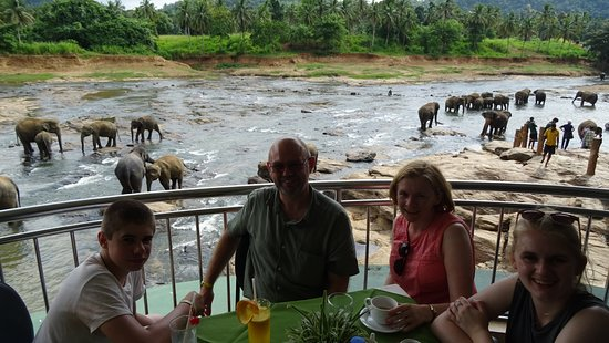 Hotel Elephant Park: Lunch time!