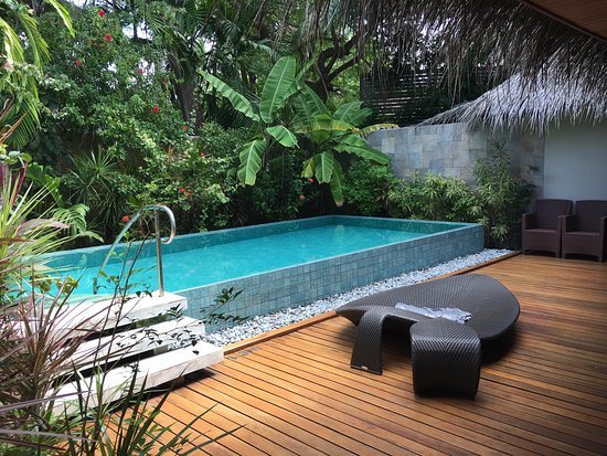 Beautiful private pool picture of baros maldives baros - Hotels in yeovil with swimming pool ...