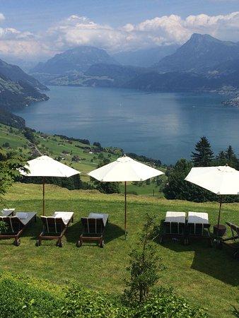 Hotel Villa Honegg: photo3.jpg