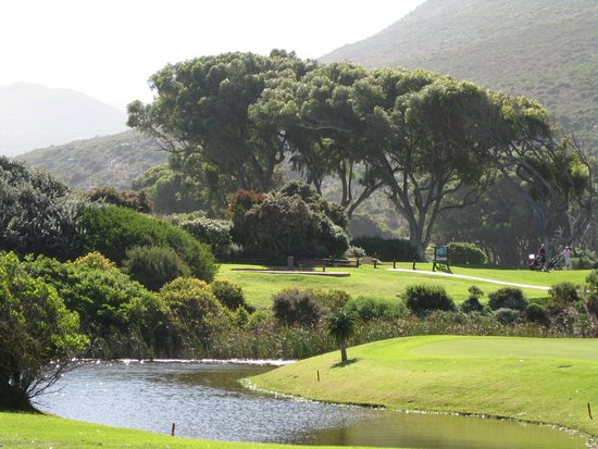 Dunvegan Lodge: Clovelly Golf Course!  Fantastic course!