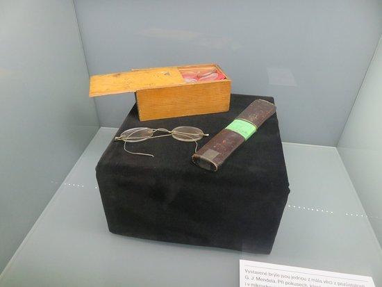 Brno, Tjeckien: Mendel's personal items.