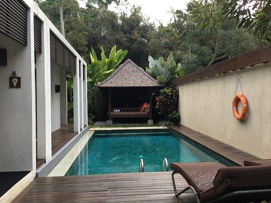 The Samaya Bali Ubud: photo0.jpg