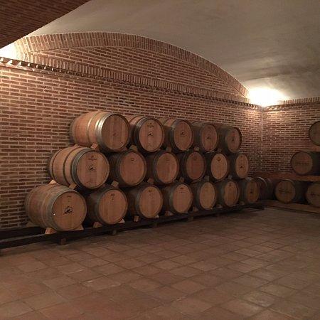 Bodegas y Viñedos Castiblanque: Wine!