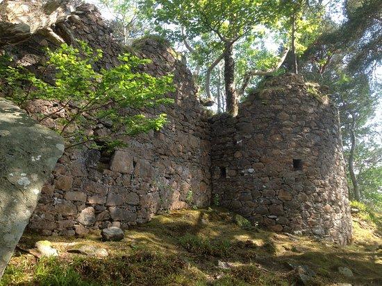 Gartocharn, UK: The castle on Inveruglas Isle