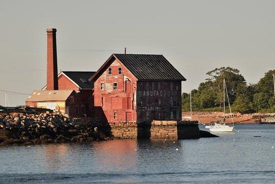 Cape Ann Whale Watch照片