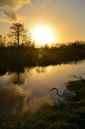 Big Cypress National Preserve: Sonnenuntergang am Big Cypress Zentrum