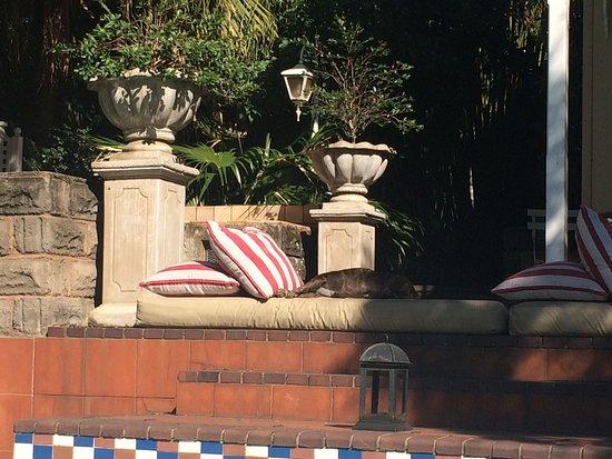 Goble Palms Guest Lodge & Urban Retreat: photo2.jpg