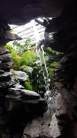 Inverness Botanic Gardens: 20160809_100813_large.jpg