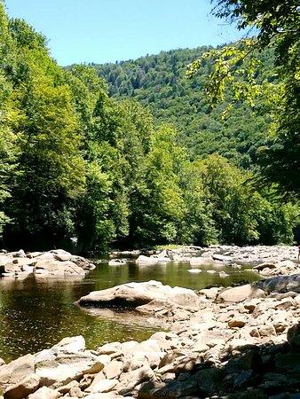 Elkins, Δυτική Βιρτζίνια: 20160807_131523_large.jpg