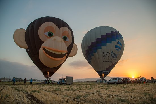 Afula, Israel: Zulu the flying monkey