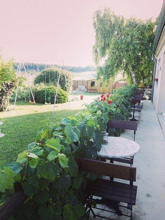 Les Grappes d'Or : incantevole giardino circondato da vigneti