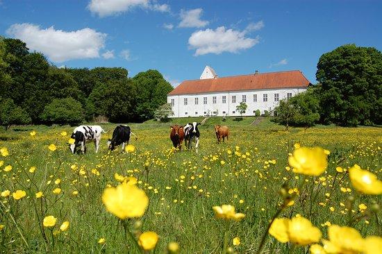 Orslev Kloster