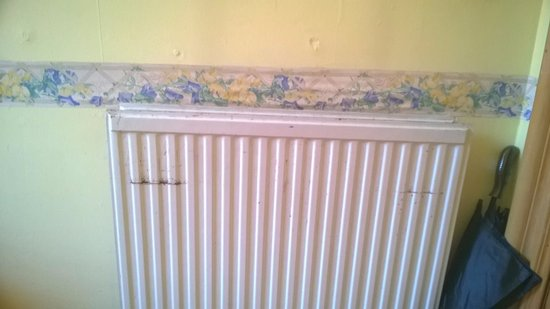Ardgowan House Hotel: Damage on wall and radiator
