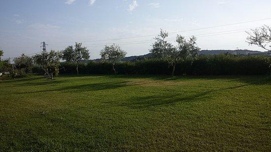 Landscape - Paglia & Fieno Photo