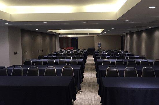 Fastos Hotel: Salon de Conferencias