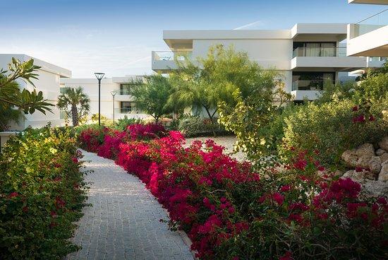Papagayo Beach Hotel - Garden