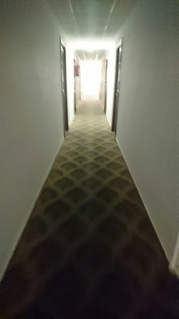 Hotel Veronica: DSC_0014_16_large.jpg