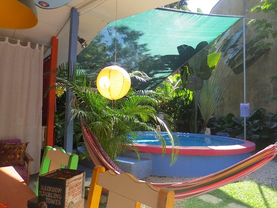 Buddha House Boutique Hostel: small but very deep pool