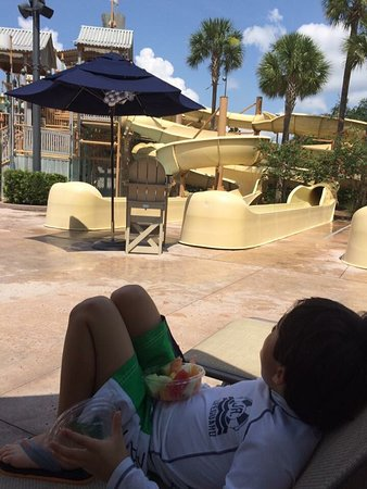 Gaylord Palms Resort & Convention Center: photo0.jpg