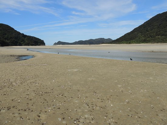 Abel Tasman Guides: Almost mid-way, looking towards the opening into the sea.