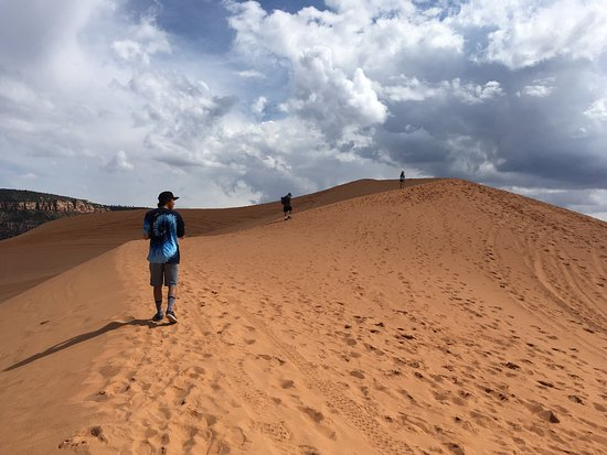 Coral Pink Sand Dunes State Park 사진