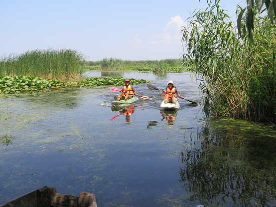 tulcea single parents Tulcea: tulcea, județ (county), southeastern romania it is bounded on the north by moldova and the eastward-draining danube river near tulcea city, which is the county capital, the danube branches into the sulina and st george tributaries, which empty into the black sea.