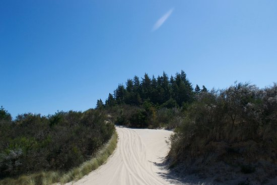 Florence, OR: Dunes
