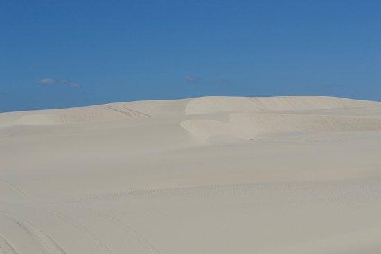 Florença, OR: Dunes