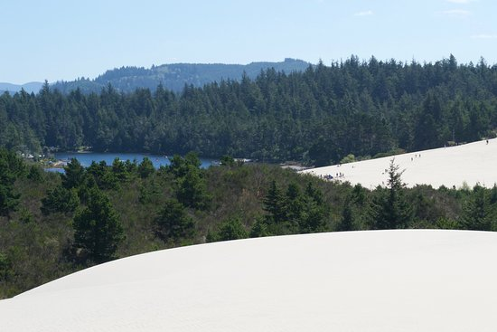 Florence, OR: Cleowax Lake