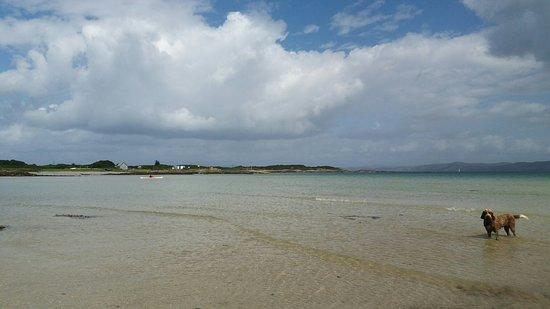 Isle of Gigha, UK: 20160808_135213_large.jpg