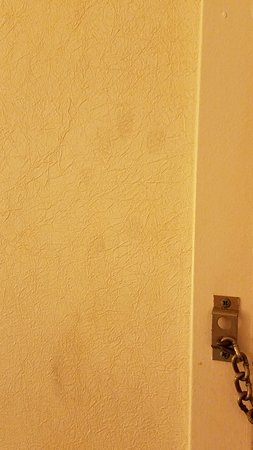 Plymouth, MN: Walls are dirty with fingerprints by the door no way can miss it.