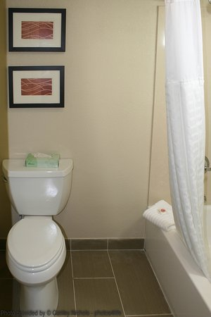 Comfort Inn Newport News/Williamsburg East: Bathroom