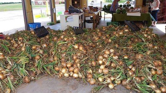 Byars, OK: Local grown onions!