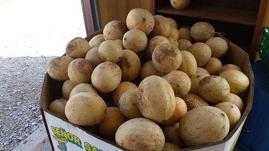 Byars, OK: Cantalope!