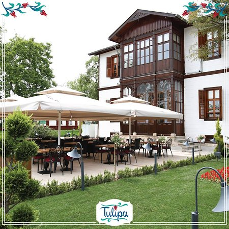 Tulipa Osmanli Saray Mutfagi