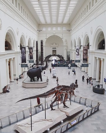 Chicago Field Museum Entrance Hall
