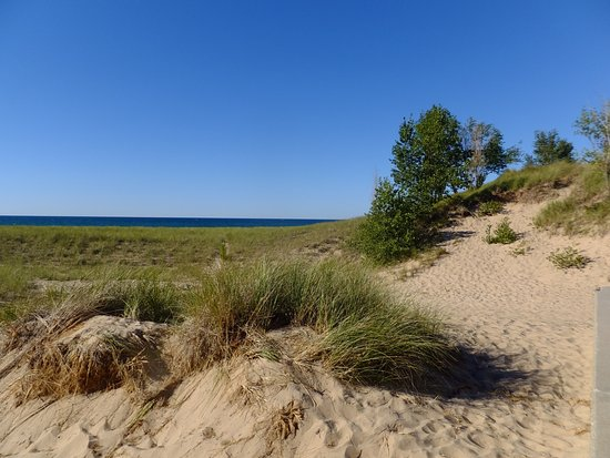 Tiscornia Park Beach Picture Of Tiscornia Park Saint