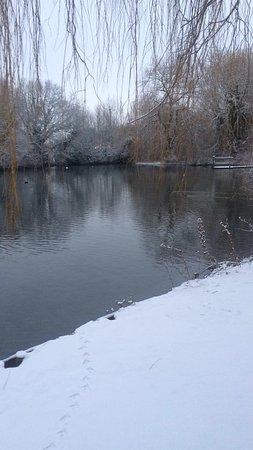 Black Dam Ponds