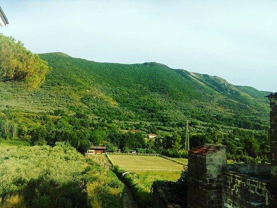 La Cavella