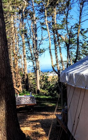 What A Beautiful Place Picture Of Mendocino Campground