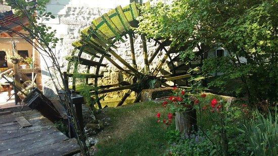 Le Moulin des Foulons : 20160724_094028_large.jpg