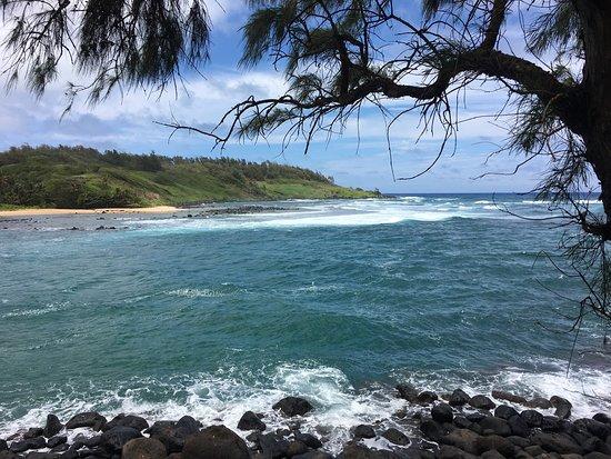 Kauai Photo Tours: photo2.jpg
