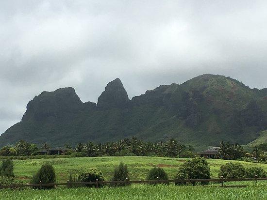 Kauai Photo Tours: photo3.jpg