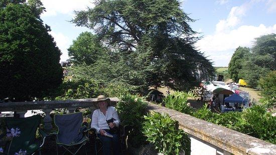 Mount Ephraim Gardens: The terrace