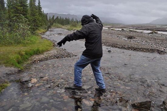 Denali National Park Campgrounds: Teklanika River fun