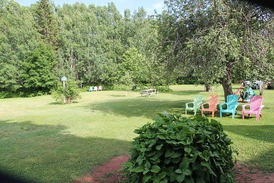 Seven Gables B&B: Der Gartenbereich ist sehr groß und lädt mit verschiedenen Sitzmöglichkeiten zum Verweilen ein.
