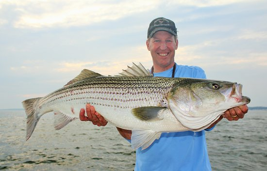 Old Saybrook, CT: Rich with a nice bass that was released.